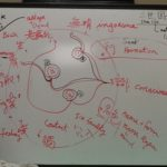 12 Links of Dependent Originations